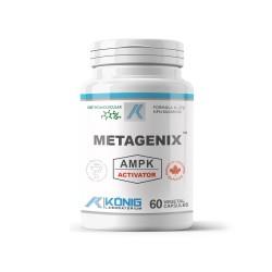 Metagenix, 60 caps, Konig Nutrition Laboratoriums