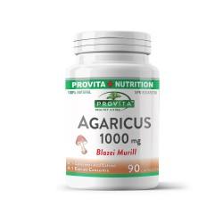 Agaricus Blazei Murill 1000 mg, 90 caps, PROVITA-NUTRITION