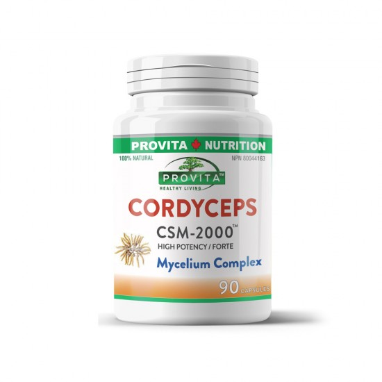 Cordyceps CSM-2000™, 90 caps, PROVITA-NUTRITION
