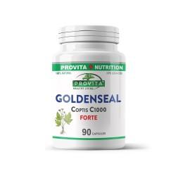Goldenseal Coptis C. Forte 1000, 90 caps, PROVITA-NUTRITION