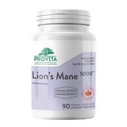 Lion's Mane 5000TM – ciuperca Coama leului (Hericium) – 500 mg, 90 caps