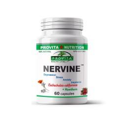 Nervine™, 60 caps, PROVITA-NUTRITION