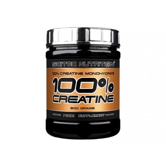 100% Creatine, 300 g